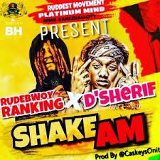 Rudebwoy Ranking x D Sherif – Shake Am (Official Video)