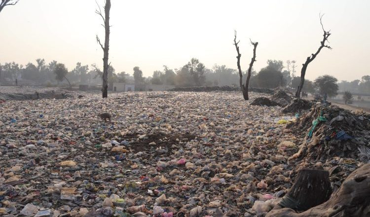 Desertification: Northern State Governments Should Avoid Kicking The Can Down The Road