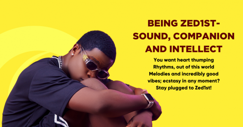 Being Zed1st- Sound, Companion and Intellect [A Must Read]