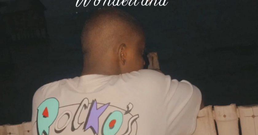 DTL – Wonderland (Omah Lay Refix)